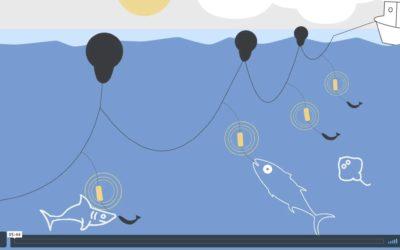 SHARKGUARD NOMINE AUX TROPHÉES INNOVATION OCEAN
