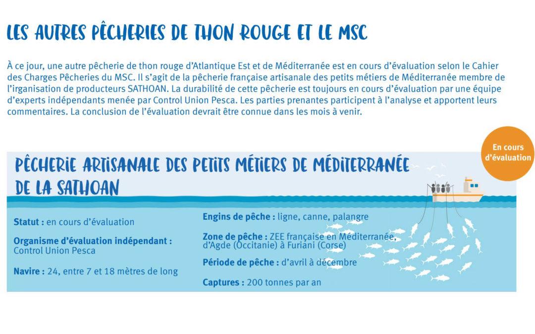 LE THON ROUGE EN PASSE D'ÊTRE CERTIFIE MSC