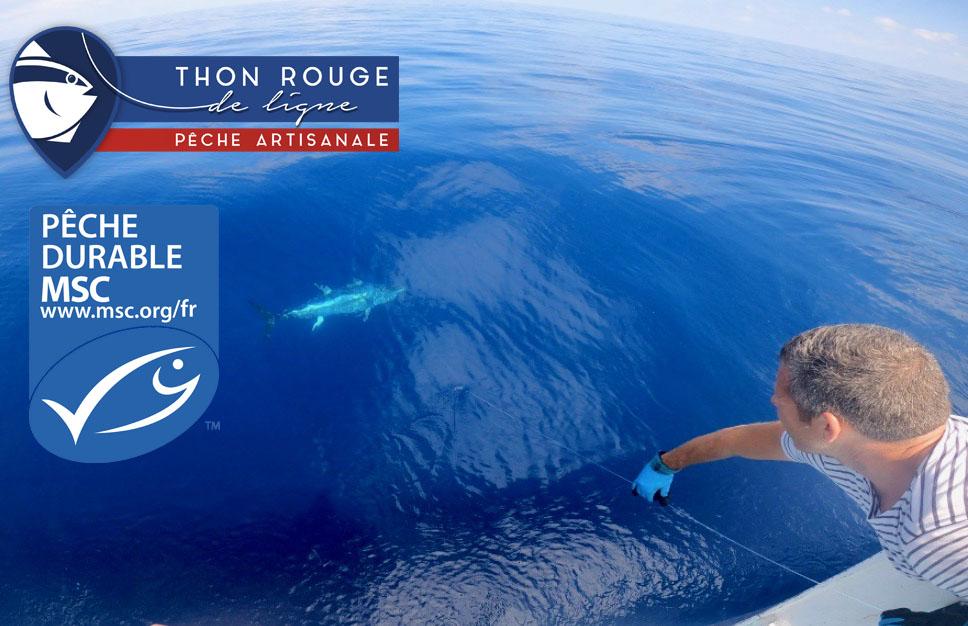 LA PECHERIE THON ROUGE DE LIGNE , CERIFIEE MSC !