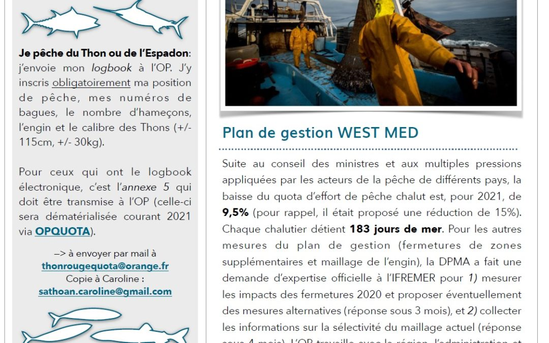 LA LETTRE D'INFORMATION JANVIER 2021